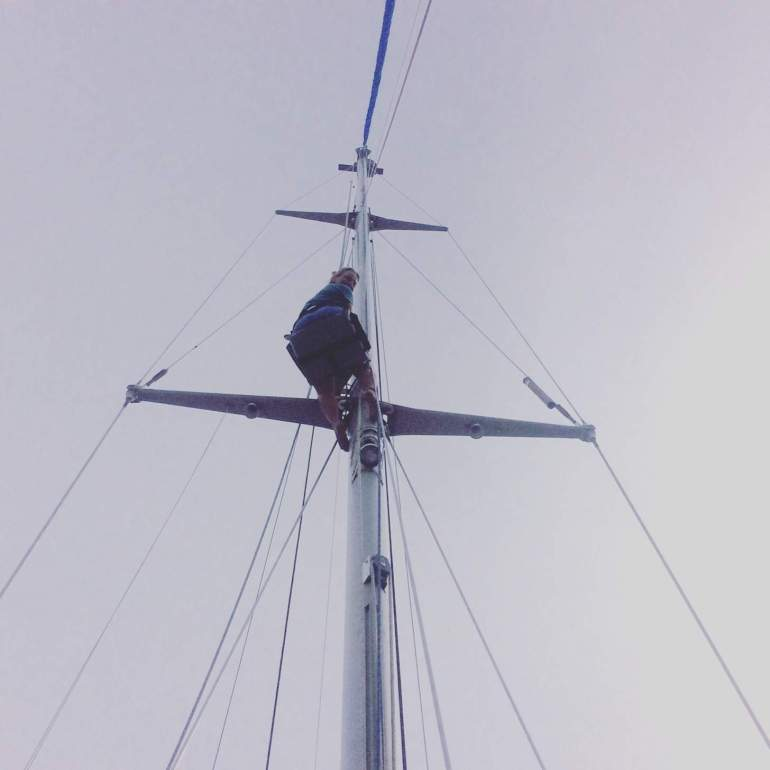 Took a climb up the mast as Chris can't do it. I'm not a great fan of heights so mumbled under my breath of all kinds of curses and don't look down, sideways and loose your cool.